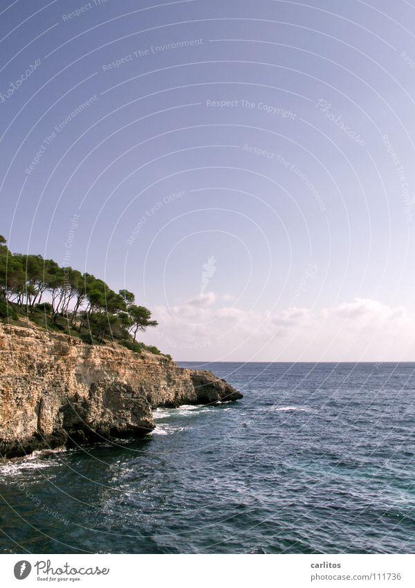 MITTElmeer mal rechts Himmel Wasser Baum Sommer Freude Strand Meer Ferien & Urlaub & Reisen Wolken Wald Erholung Freiheit Glück Sand träumen Wärme