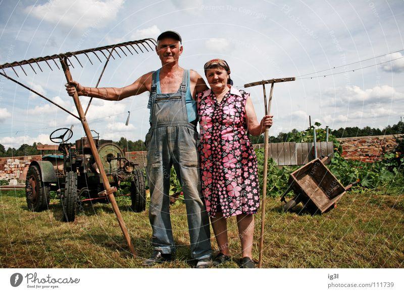 reichtum Mensch Frau Himmel Mann blau alt grün schön rot Tier Liebe Ernährung Wiese Lebensmittel Gras Glück