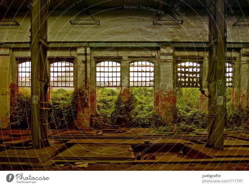 Industrieromantik Fenster Wachstum leer Licht Fabrik verfallen kaputt Demontage Farbe Baustelle Raum Lagerhalle Säule pfanzen wuchern Natur maschinenfabrik