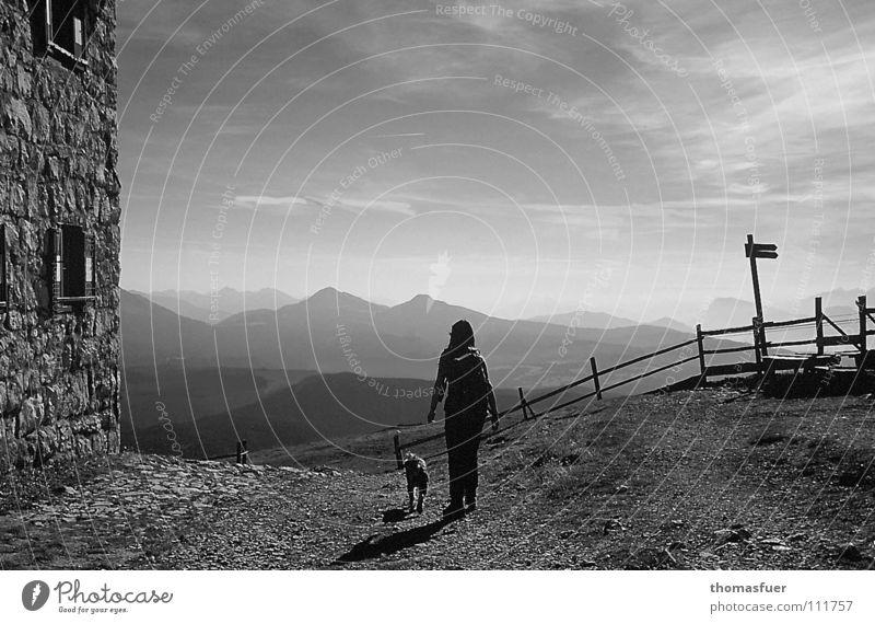 einfach losgehen Abendsonne Schlagschatten Wolken Begleiter Hund Ferne Hoffnung Selbstvertrauen schön Schwarzweißfoto Berge u. Gebirge Nebel Unbekanntes