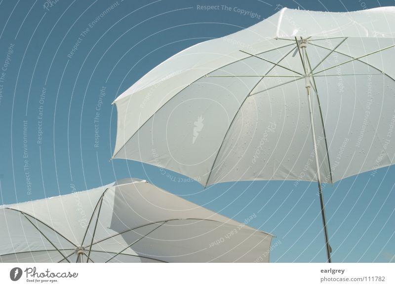 zwei für wolkenlos Himmel weiß blau Sommer Regen Luft 2 Sonnenschirm leicht Schönes Wetter Leichtigkeit Anschnitt unschuldig strahlend filigran aufregend