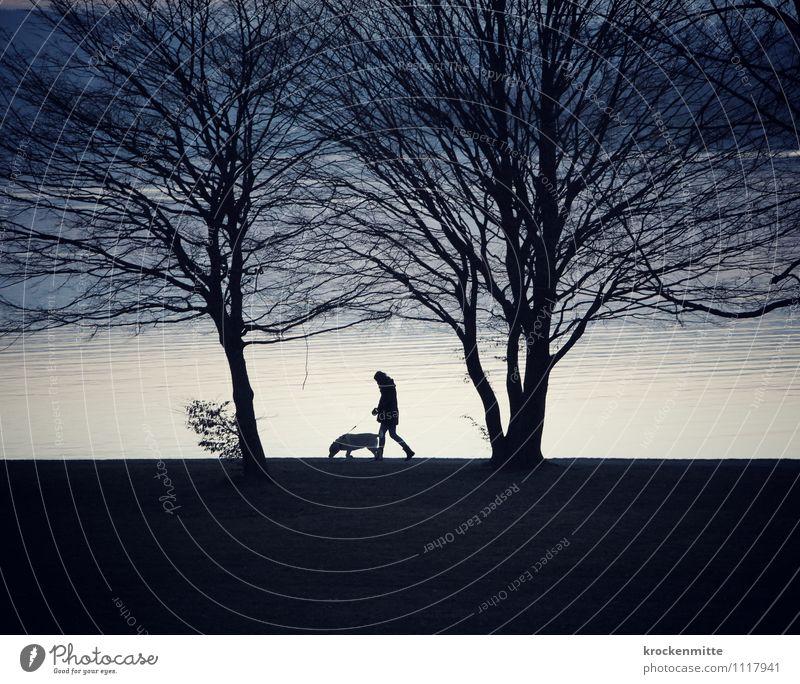 Reservoir Dog Mensch Hund Natur blau Baum Landschaft Tier Strand schwarz Herbst See gehen Freundschaft paarweise laufen Ast