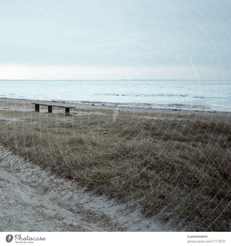 Vergangen Himmel blau weiß Meer Strand Winter Einsamkeit kalt Tod Schnee grau Gras Wege & Pfade Sand Küste Wetter