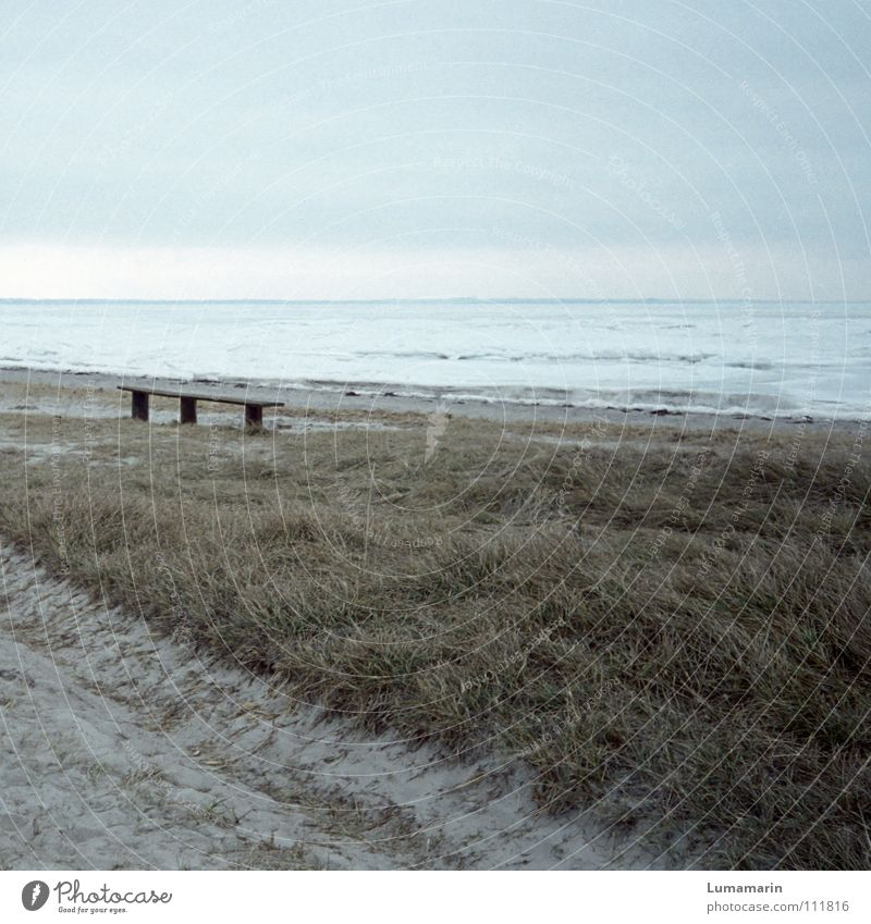 Vergangen Strand Meer Winter Schnee Sand Himmel Horizont Klima Klimawandel Wetter Eis Frost Gras Küste Wege & Pfade frieren kalt blau grau weiß Tod Einsamkeit