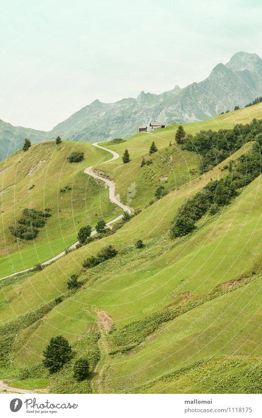 Gebirge Almwiesen Wanderweg Wanderhütte Umwelt Natur Landschaft Hügel Felsen Alpen Berge u. Gebirge Gipfel grün Sehnsucht Fernweh Abenteuer Zufriedenheit