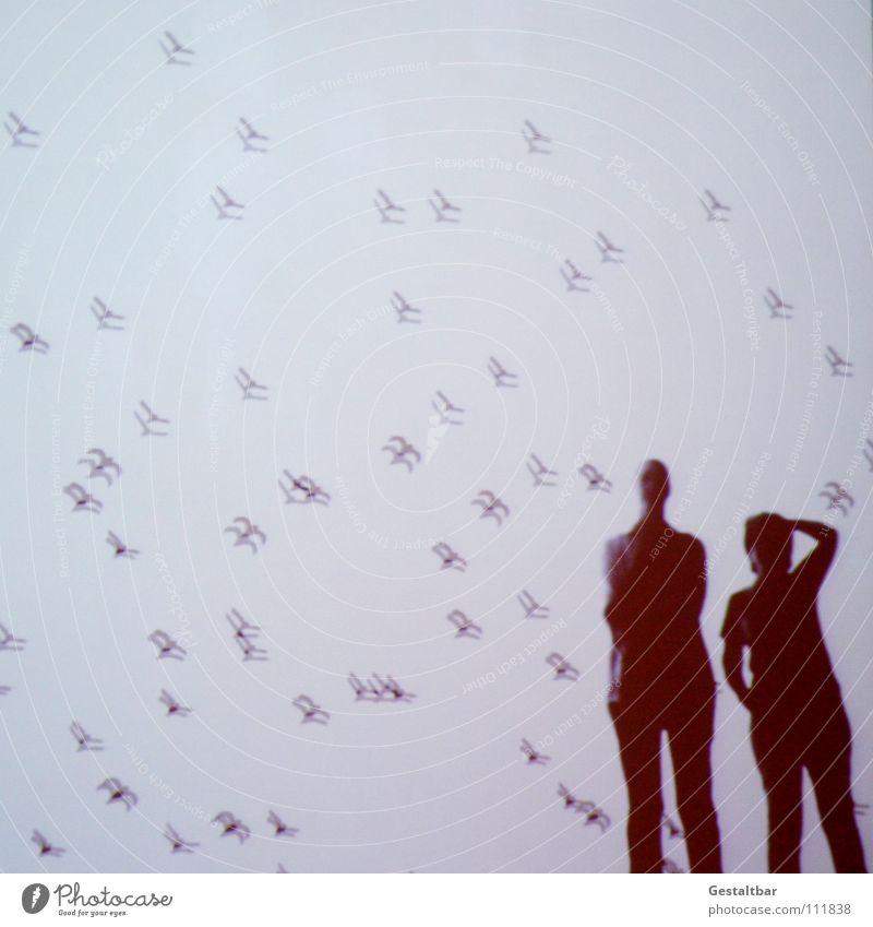 Schattenspiel 15 Vogel Frau Silhouette geheimnisvoll stehen Denken Aussicht gestaltbar Ausstellung Schwarm fliegen Projektionsleinwand Mensch Blick Bewegung