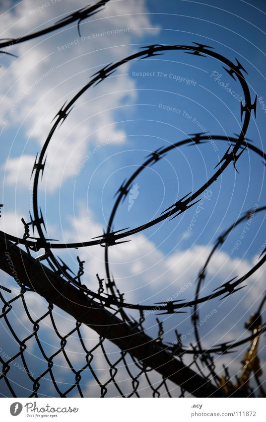 n.a.t.o. Draht Stacheldraht Zaun Wolken blau Maschendraht Barriere gefährlich widersetzen Krieg gefangen Sicherheit Grenze Verbote Feindschaft state Demokratie