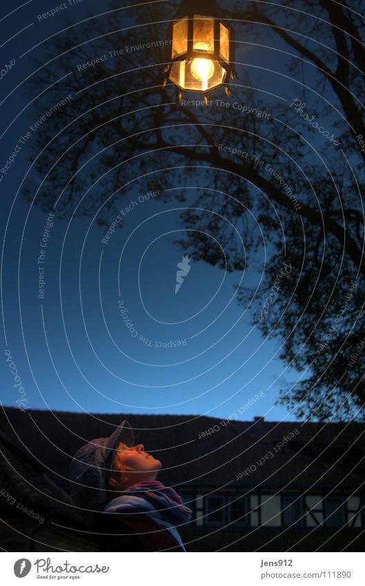 Vesteblick Dämmerung Abend Verlauf Farbverlauf Coburg Fenster Laterne Lampe glühen Lampenschirm Licht HDR schwarz gelb Baum Blatt Schal Konzentration Macht