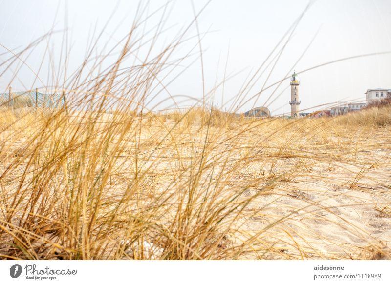 Warnemünde Landschaft Pflanze Sand Wolkenloser Himmel Ostsee Zufriedenheit Vorfreude Warmherzigkeit achtsam ruhig Einsamkeit Warnemünder Teepott Leuchtturm