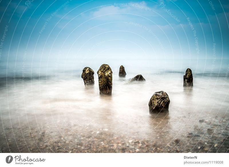 Herausragen Strand Meer Landschaft Sand Wasser Wetter Nebel Küste Ostsee Stein blau braun gelb Buhne Heiligendamm Mecklenburg-Vorpommern Farbfoto Außenaufnahme