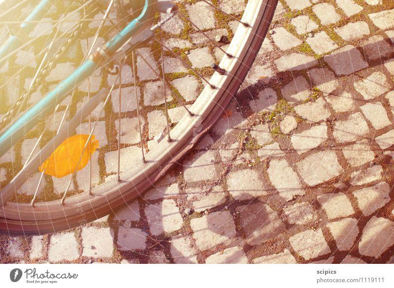 Luft raus Natur Sommer Sonne Umwelt Leben Straße Herbst Frühling Wege & Pfade Sport Gesundheit Energiewirtschaft Verkehr Fahrrad Ausflug Schönes Wetter