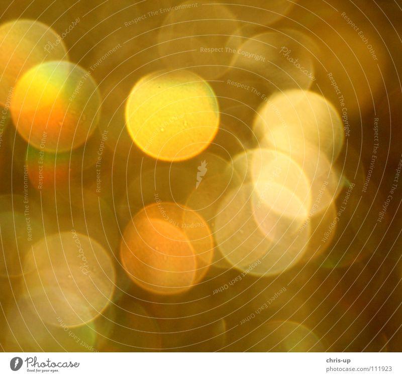 Unschärfekreis Farbe schwarz gelb Beleuchtung Lampe Kreis rund Punkt durcheinander Alkohol Alkoholisiert Reflexion & Spiegelung Nachtleben mehrfarbig Licht