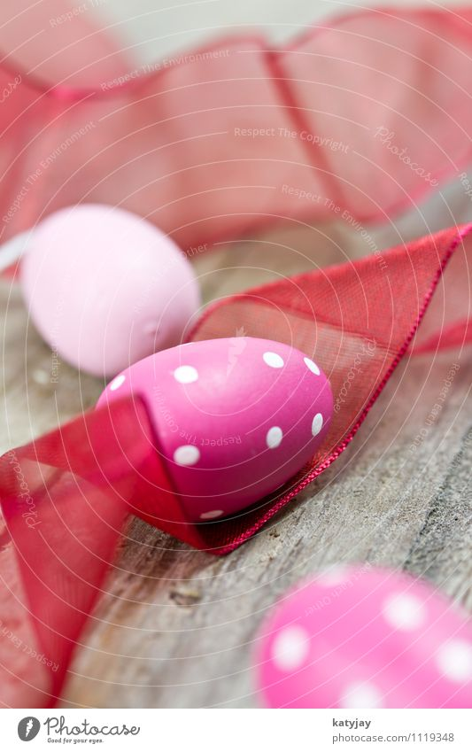 Ostereier Ostern Osternest Farbe rosa Ostermontag Hintergrundbild Fröhlichkeit Ei Osterhase Frühling nah violett Nahaufnahme Werkstatt rot