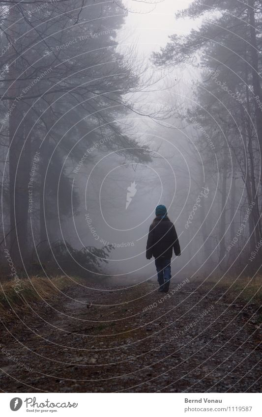 ||i| Mensch Kind Natur schön Baum Erholung Einsamkeit Landschaft Mädchen Winter Wald feminin Wege & Pfade grau gehen träumen