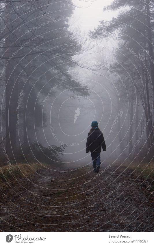 ||i| schön Winter Mensch feminin Mädchen Rücken 1 8-13 Jahre Kind Kindheit Natur Landschaft Wetter Nebel Baum Wald Wege & Pfade gehen träumen grau Einsamkeit