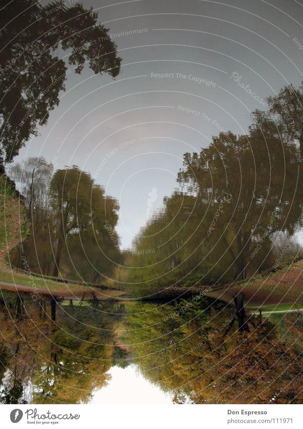 Verkehrte Waldwelt Natur Wasser Himmel Wolken Baum Sträucher Park Teich See grün Idylle Bremen spiegelverkehrt Bürgerpark Reflexion & Spiegelung