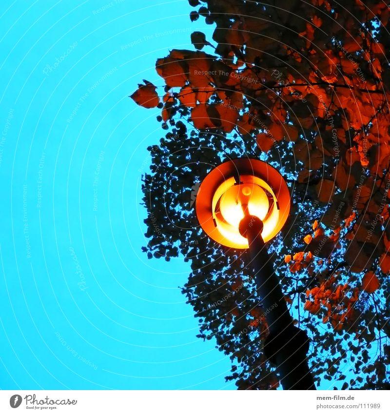 unter der laterne Laterne Straßenbeleuchtung Nacht Bürgersteig Licht Blatt Herbst gelb Glühbirne Dämmerung Beleuchtung zeitumstellung Energiewirtschaft hell