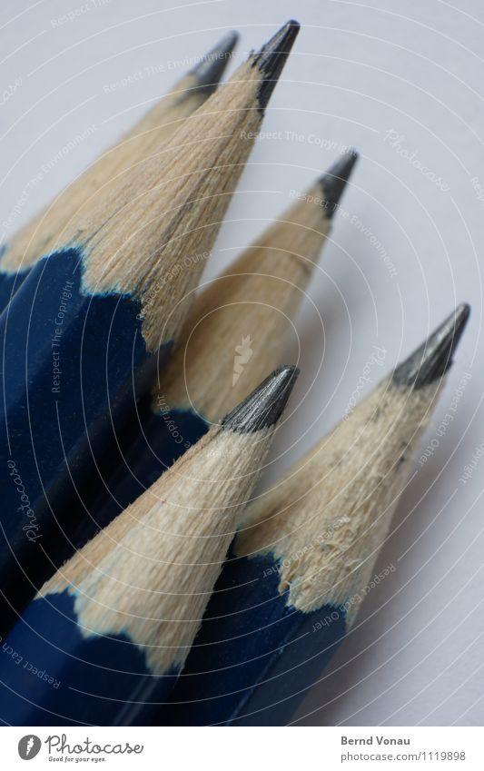 Absolventen Schreibwaren Schreibstift Holz Linie blau braun grau Graphit Bleistift aufwärts richtungweisend Richtung Zusammenhalt Teamwork oben Spitze Maserung