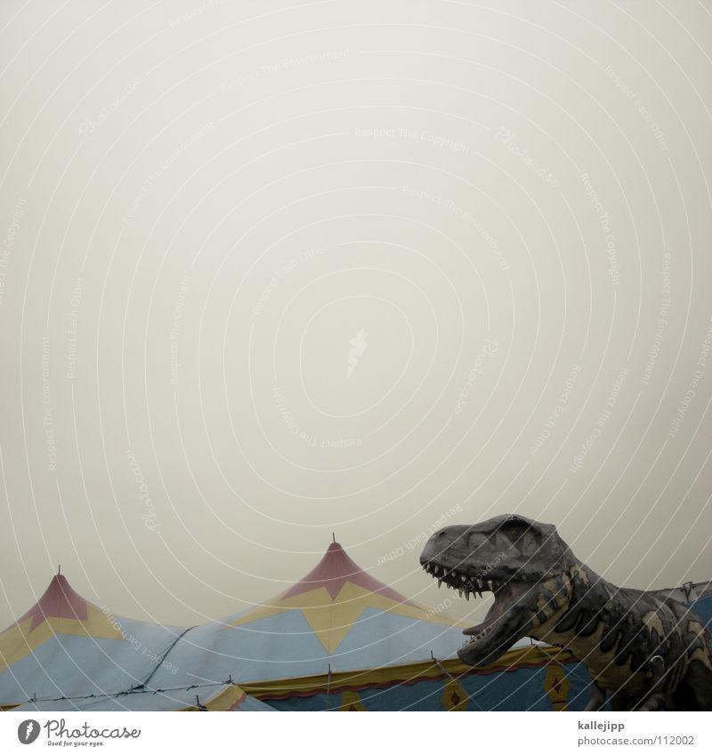 am wochenende in brandenburg Urzeit Dinosaurier Zelt Zirkus Attraktion Entertainment Langeweile Frustration teuer Eingang Show Desaster Godzilla Fleischfresser