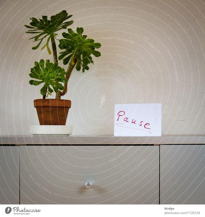 Pause, Hinweisschild in einem Büro. schlichte Pflanze und Aktenschrank Häusliches Leben Innenarchitektur Dekoration & Verzierung Büroarbeit Arbeitsplatz