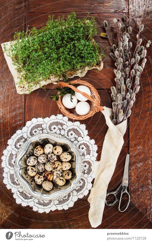 Osterzusammensetzung aus Eiern, Kresse und Kätzchen auf Holztisch Dekoration & Verzierung Tisch Ostern Schere Frühling Papier Metall natürlich braun grün