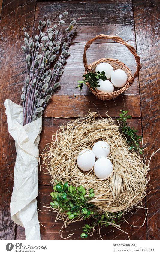 Osterzusammensetzung aus Eiern und Kätzchen auf Holztisch Dekoration & Verzierung Tisch Ostern Frühling Papier natürlich braun grün Tradition Buchsbaum offen
