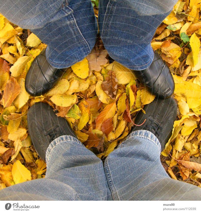 Laubbeine Blatt Herbst Schuhe Hose gelb Ocker braun schwarz Stiefel Spaziergang Waldboden Freizeit & Hobby Fuß Beine Jeanshose blau orange Geox Natur Erholung
