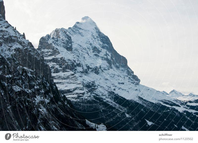 Neuer Tag, neuer Eiger Natur Landschaft kalt Umwelt Berge u. Gebirge Felsen Spitze Gipfel Alpen Schneebedeckte Gipfel Gletscher Steilwand Berner Oberland