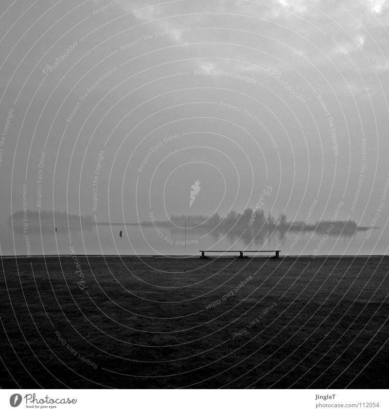 Ahnung schön Baum Meer Winter Ferne Gefühle Gras Traurigkeit See Horizont Nebel Insel trist weich Bank zart