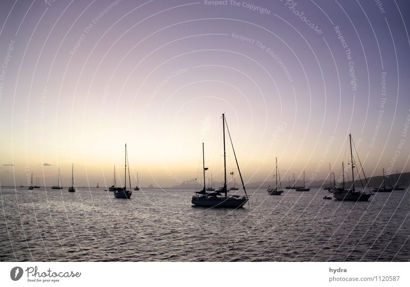 Zeit für den Sundowner Ferien & Urlaub & Reisen Ferne Freiheit Sommerurlaub Meer Segeln Wasser Wolkenloser Himmel Nachthimmel Horizont Küste Bucht