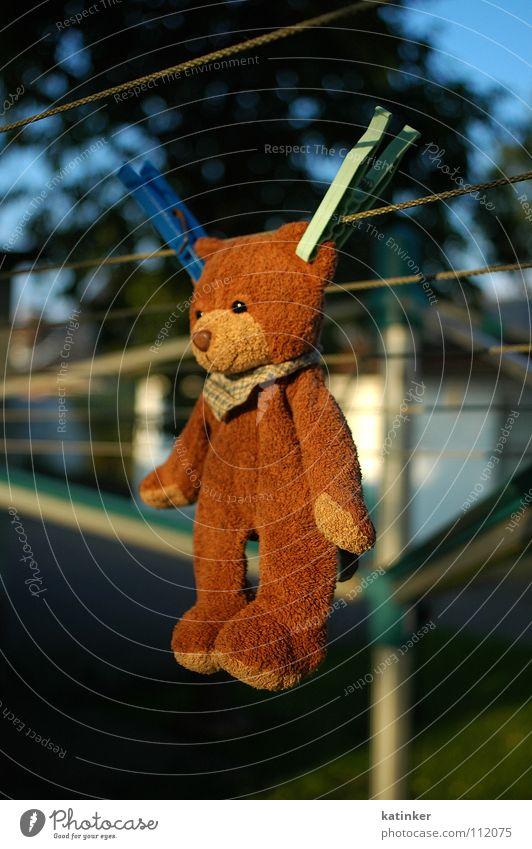 ...abhängen... obskur Wäsche Bär Stofftiere aufhängen Wäscheleine Teddybär Klammer Wäscheklammern