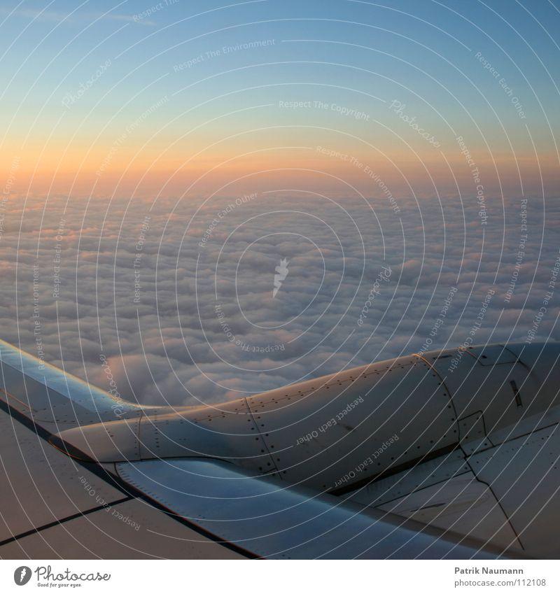 ab in den Süden I Himmel Sonne blau Wolken kalt oben Flugzeug fliegen hoch Luftverkehr Technik & Technologie harmonisch Abdeckung technisch Sonnenaufgang über den Wolken