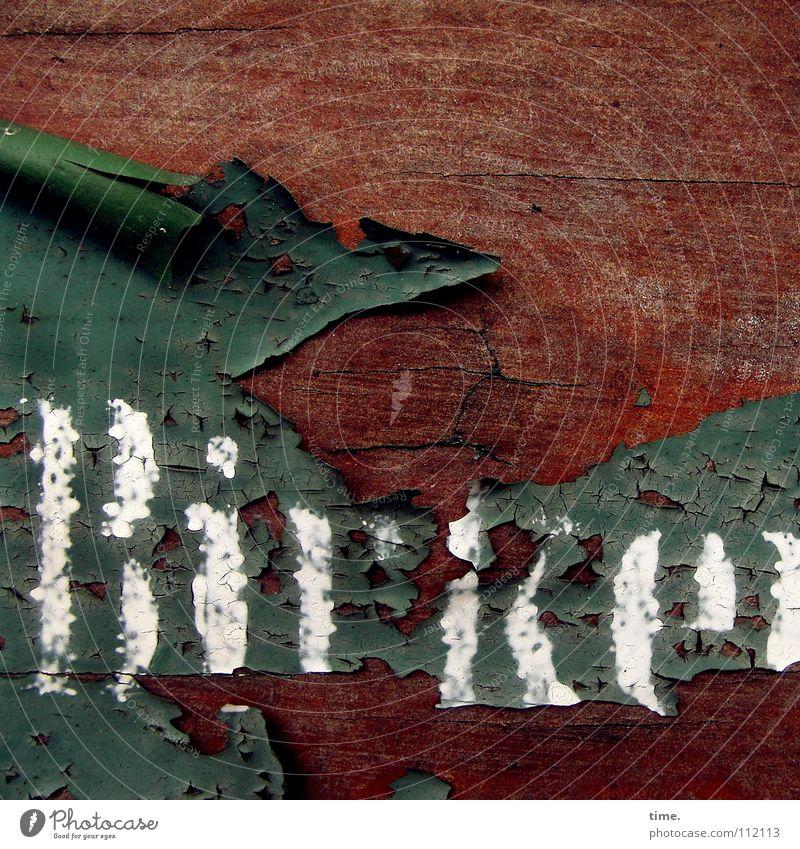 Kleingartensiedlungsentréedetail (I) alt weiß grün Farbe Holz braun Wetter Schilder & Markierungen Schriftzeichen Buchstaben Vergänglichkeit verfallen Holzbrett Nostalgie Riss vergessen