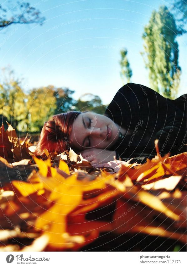 Waldfee harmonisch Wohlgefühl Zufriedenheit Erholung ruhig feminin Himmel Herbst Schönes Wetter Blatt Wiese rothaarig schlafen träumen frei natürlich blau