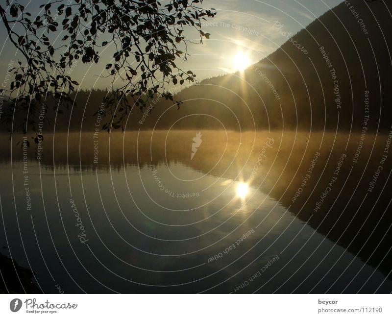 Morgenstimmung am See ruhig Herbst Küste Vergänglichkeit aufwachen