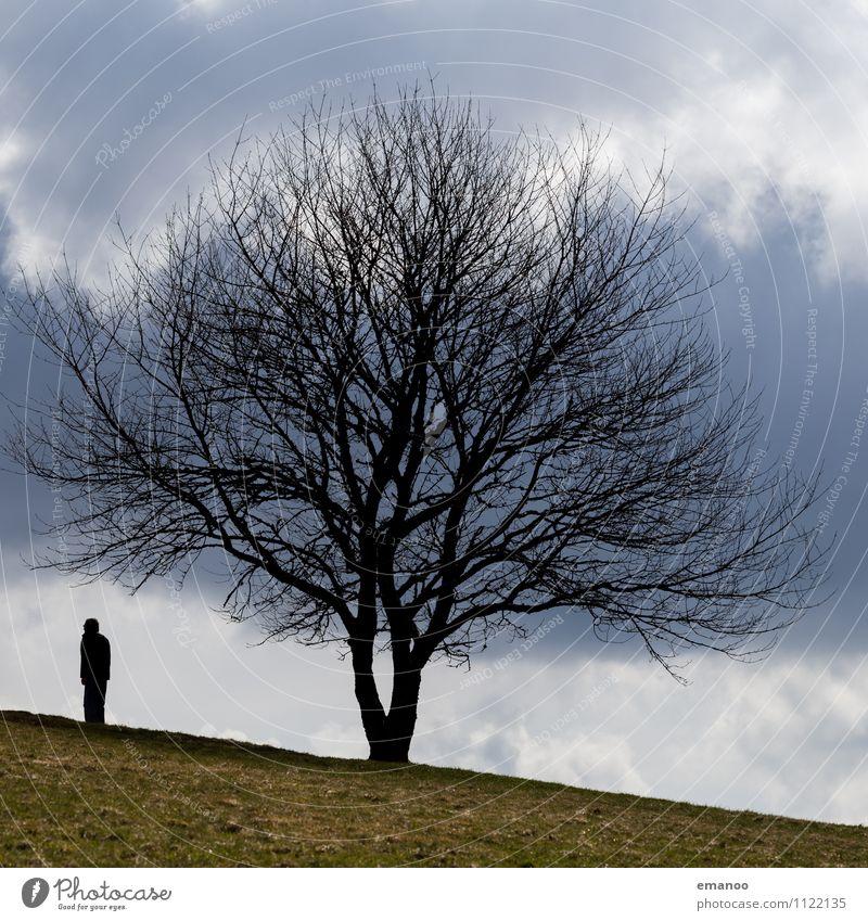 Mann unter Baum Lifestyle Freude Freizeit & Hobby Ferien & Urlaub & Reisen Tourismus Ausflug Ferne Freiheit Berge u. Gebirge wandern Mensch Erwachsene