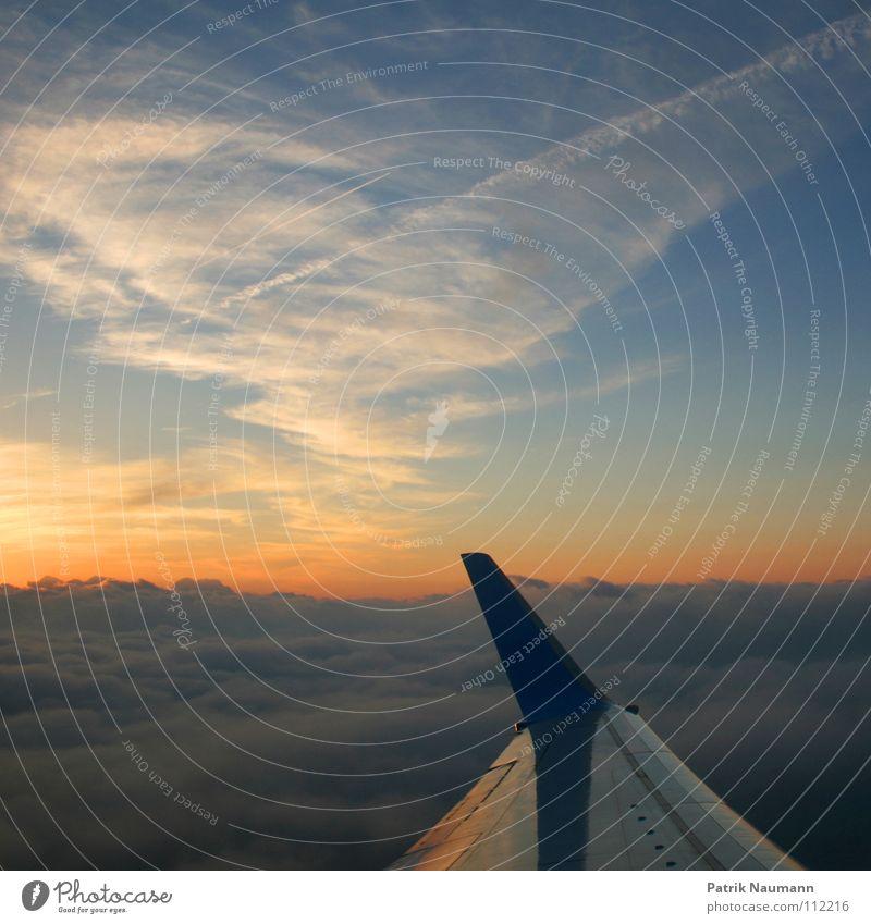 ab in den Süden II Himmel Ferien & Urlaub & Reisen Wolken Ferne oben fliegen hoch Beginn Flugzeug Luftverkehr Streifen Unendlichkeit Tragfläche Süden Kondensstreifen Farbenspiel