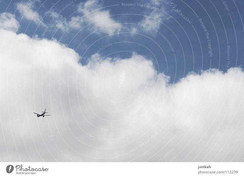 auf und davon Himmel weiß blau Ferien & Urlaub & Reisen Wolken Ferne oben Bewegung Wege & Pfade Luft Flugzeug Luftverkehr Güterverkehr & Logistik Tragfläche