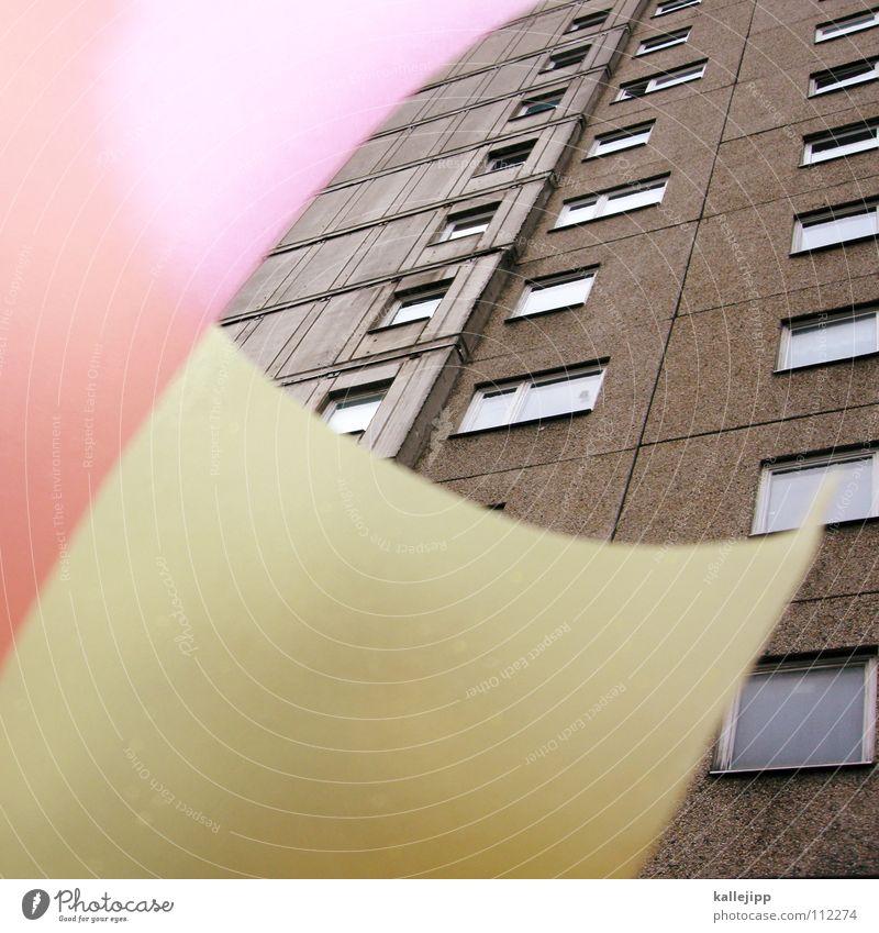 colour up my platte Haus Farbe Wand Fenster Architektur Raum rosa leer Ecke Häusliches Leben Bauernhof Aussicht Grenze Verfall Rahmen durchsichtig