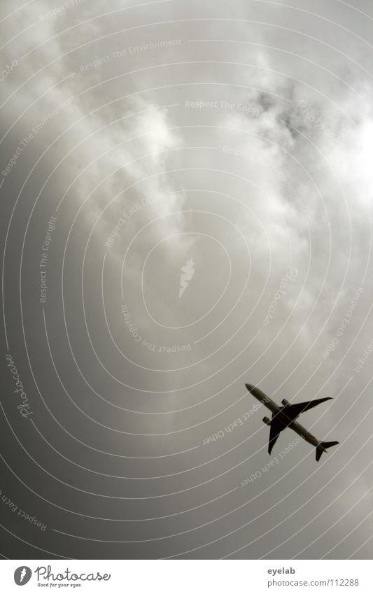 350 Himmel Ferien & Urlaub & Reisen Wolken oben grau Flugzeug fliegen Industrie Luftverkehr Ecke Verkehrswege aufwärts Flugzeuglandung abwärts Abheben bedecken