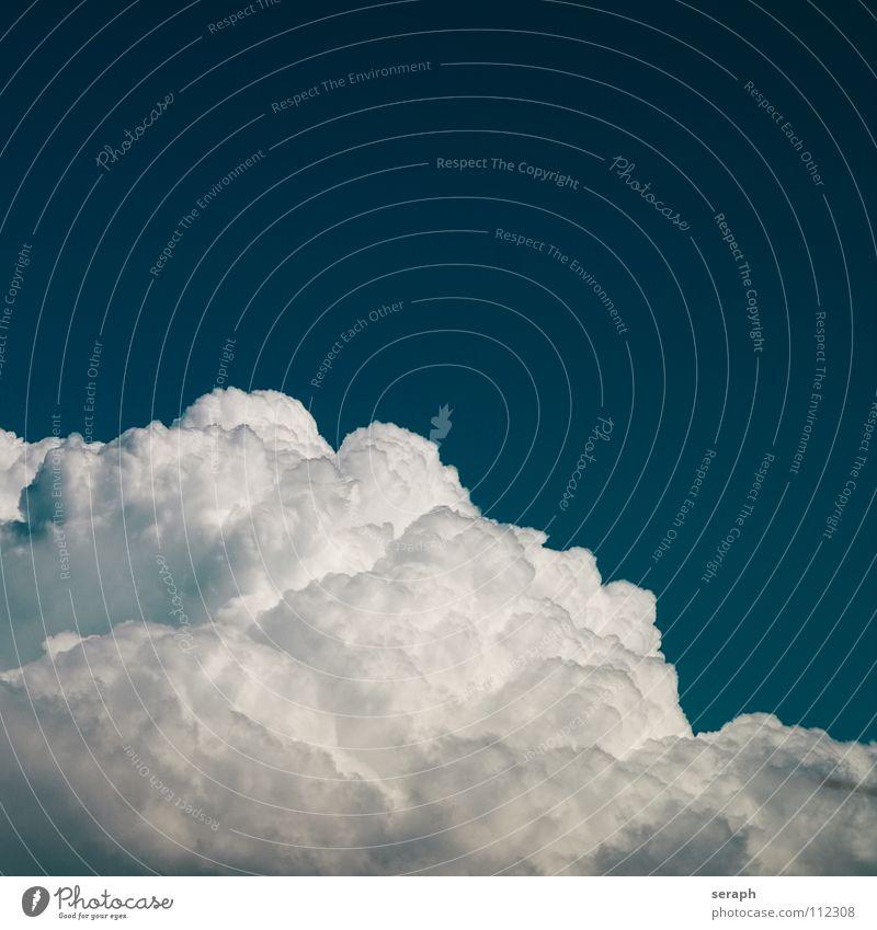 Cumulus Wolken Himmel Freiheit Leichtigkeit leicht blau Hintergrundbild Kumulus Wind Wasserdampf Luft schönwetterwolke Strukturen & Formen fluffig weich