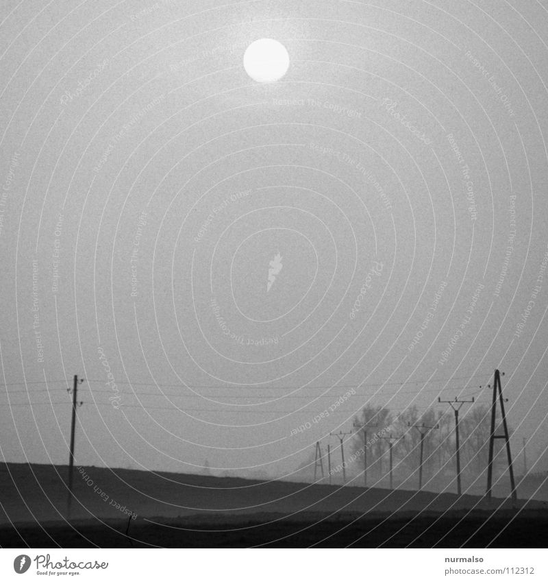 Untergang im Nebel Sonne Winter Einsamkeit dunkel grau Feld Angst Nebel Elektrizität gruselig Landwirtschaft verstecken Strommast Panik Heimat Mecklenburg-Vorpommern