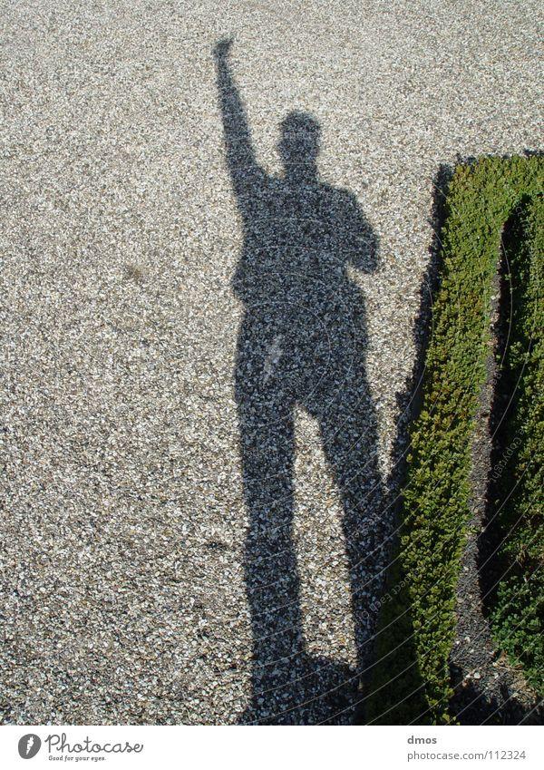 Thumbs Up! Spielen Daumen Finger Licht Kies gestikulieren grau grün Piktogramm Himmelskörper & Weltall Schatten Arme Sonne Buchs hoch aufwärts Mensch