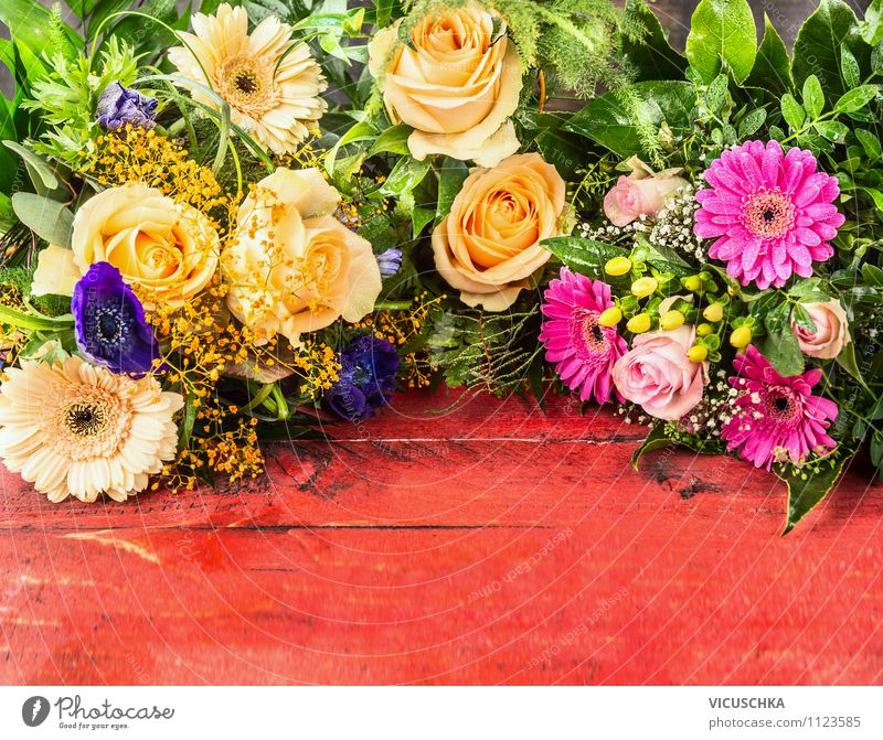 Blumenstrauß auf rotem Hintergrund Natur Pflanze schön Sommer Blume Blatt gelb Liebe Blüte Stil Holz Hintergrundbild Feste & Feiern Garten rosa Design