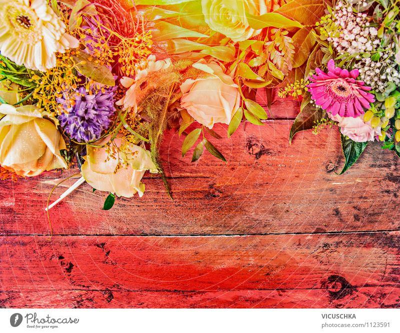 Sommer Blumen auf rotem Holztisch Natur Freude Haus gelb Liebe Stil Hintergrundbild Feste & Feiern Garten rosa Freizeit & Hobby Design Dekoration & Verzierung