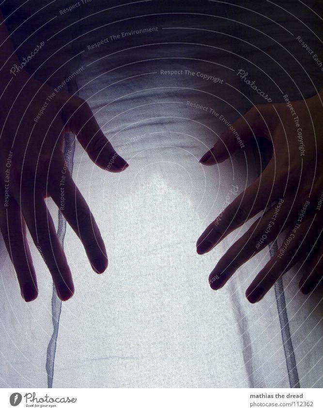 Licht vs. Schatten Frau Hand schön dunkel hell glänzend Finger Bekleidung weich Hinterteil durchsichtig schreiten Belichtung