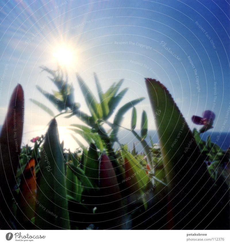 LochbildLissabon03 Himmel Sonne Meer Wiese Horizont Aussicht Lissabon Cabo da Roca