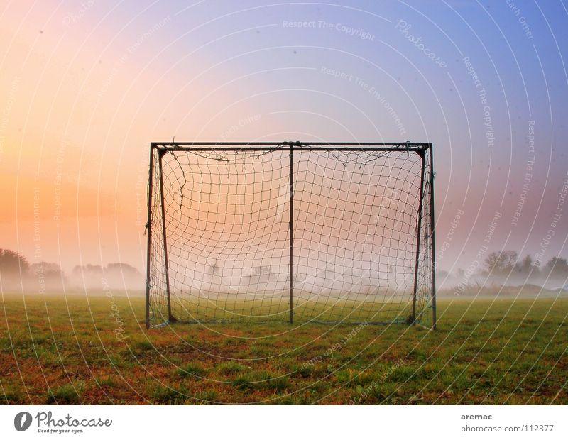 Nach dem Spiel ist vor dem Spiel Spielen Fußballplatz Wiese Gras grün Nebel Stimmung Sonnenaufgang Sport Herbst Freizeit & Hobby Aktion Bolzplatz treten Morgen