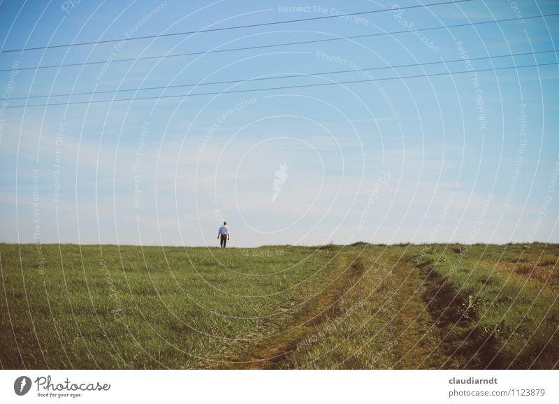 Zum Horizont Mensch maskulin Mann Erwachsene 1 Natur Landschaft Himmel Sommer Schönes Wetter Gras Wiese Feld Wege & Pfade Bewegung gehen laufen blau grün