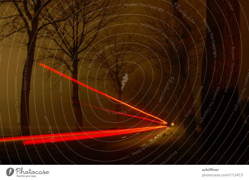 Roter Pfeil oder Radarfallenfake Baum Allee Nacht dunkel rot Nebel Rücklicht Bremslicht Lastwagen KFZ Wohnmobil Radarkontrolle Straßenverkehr Verkehr